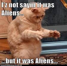 Cat Alien Meme - that ancient aliens cat ancient aliens know your meme