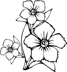 flowers color cut coloring images pages plants