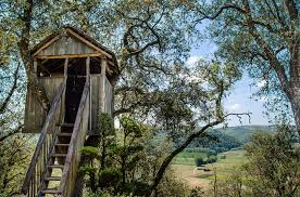 free photo tree house play children free image on