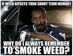 Legalize Weed Meme - oh cannabis church of the rock