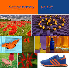 Complementary Colors by Color Theory The Basics Useful Tools And Further Resources