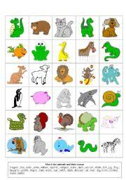 animals flashcards worksheet by storyteller