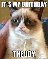 Joy Meme - it s my birthday the joy cat meme cat planet cat planet