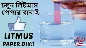 How To Make Litmus Paper At Home - how to make litmus paper at home in ক ভ ব