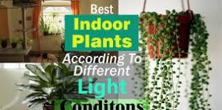 15 brilliant diy vertical indoor garden ideas to help you create