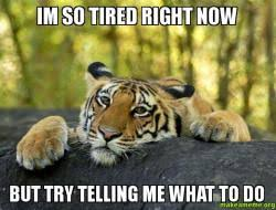 I M So Tired Meme - im so tired right now but try telling me what to do make a meme