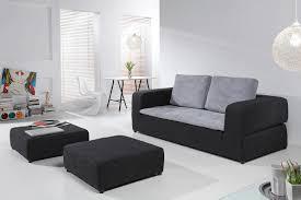 Tapis Salon Noir Et Blanc by Ordinaire Tapis De Salon Noir Et Blanc 16 Soldes Relaxima