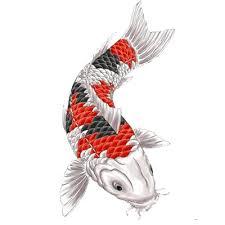 fish japanese inspiration transparent png images