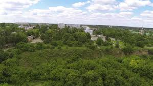 Aerial view of residential homes and suburbs in green environment