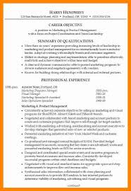 Career Summary Resume Example by Professional Summary Resume Summary Example For Resume Resume
