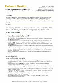 sales and marketing resume sales marketing resume