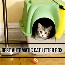 black friday litter boxes amazon best 10 automatic cat litter box comparison 2016 2017 petsho