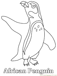 african penguin coloring free penguin coloring pages