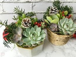 Mexican Gift Basket Diy Sangria U0026 Succulents Gift Basket Ideas Must Have Mom