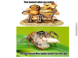 Morbid Memes - morbid miss spider by katchan meme center