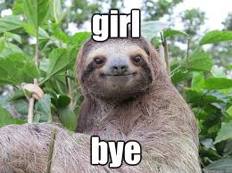 Girl Bye Meme - list of synonyms and antonyms of the word sloth girl