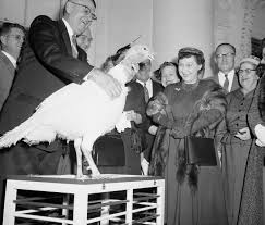 thanksgiving turkeys see 7 decades of presidential pardons time