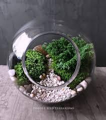 927 best terrarium miniature garden u0026 decorative plants images on