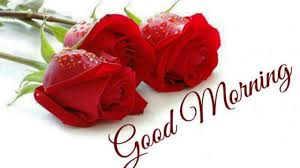 good morning flowers images for whatsapp free download good