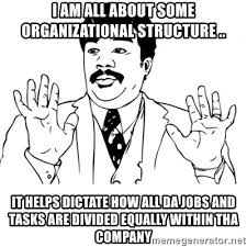 Neil Degrasse Tyson Reaction Meme - i am all about some organizational structure it helps dictate