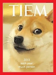 What Is Doge Meme - year of the doge such meme very 2013 wow