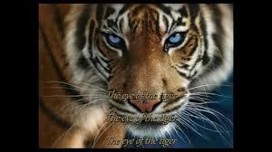 survivor eye of the tiger 1982 hd with lyrics