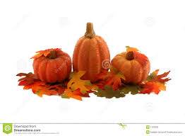 fall pumpkins background pictures fall pumpkins stock photos images u0026 pictures 31 209 images