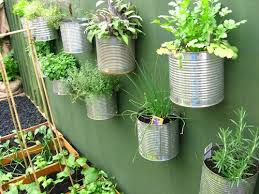 Urban Veggie Garden - urban vegetable gardening home decor u0026 interior exterior