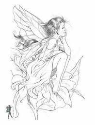 fairy coloring pages fairy pictures colour doodles