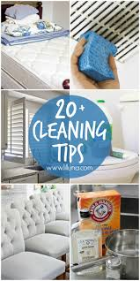 20 cleaning tips lil u0027 luna