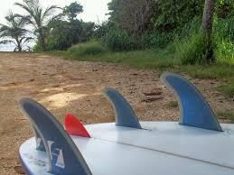 nubster fin the alternative surf culture nubster fin