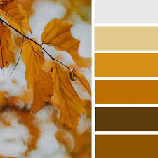 yellow mustard color yellow mustard fall color scheme 1 top ideas to try recipes