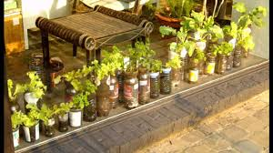 apartment garden containers balcony vegetable garden ideas for