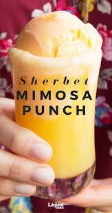 best 25 mimosa punch ideas on pinterest christmas punch alcohol