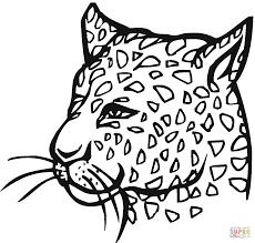 coloring cheetah coloring book set of funny jungle animals