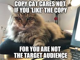 Copy Cat Meme - copy cat imgflip