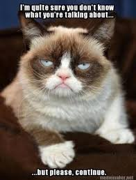 Sarcastic Cat Meme - grumpy cat mean memes grumpy cat pinterest grumpy cat