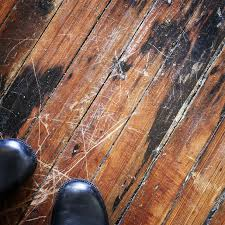 diy aid for damaged hardwood floors networx