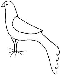 coloriage dune colombe de Noël  Tête à modeler