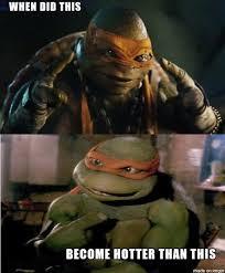 Turtle Meme - b39fafa22fcd3f464bedc74a10fac3f9 turtle meme new memes quirkybyte