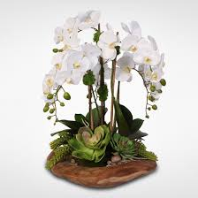 silk orchids real touch 6 stem phalaenopsis silk orchids with succulents in