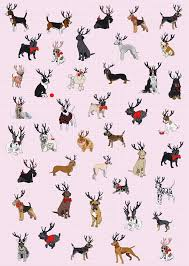 gingham wrapping paper three sheets of dogs gingham wrapping paper by illustrated cards