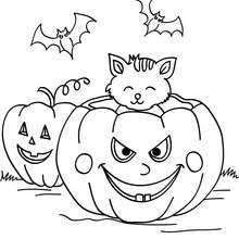 coloriage chat halloween 20 coloriages d u0027halloween gratuits à