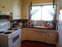 Kitchen Cabinets In Edmonton Homes For Sale Edmonton 300 000 399 000