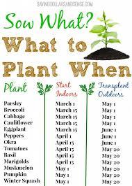 59 best vegetable gardening images on pinterest gardening