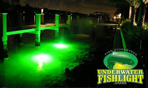 portable underwater fishing lights natural green extra bright double bulb system underwater fish light