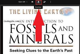 Seeking Book Pdf An Introduction To Fossils And Minerals Book