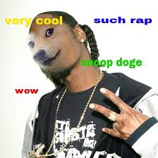Lost Doge Meme - much wow doge meme the state times