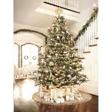 best 25 noble fir christmas tree ideas on pinterest xmas tree