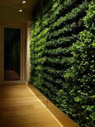 greenliving detail view of natural walls with green living plants home